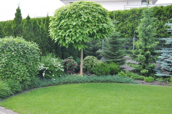 Ogród w Chybach
