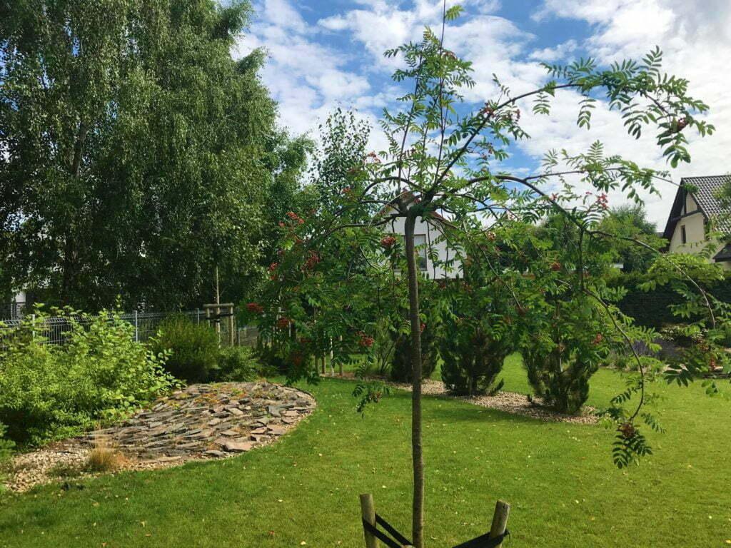 Ogród z wielofunkcyjnym boiskiem 10