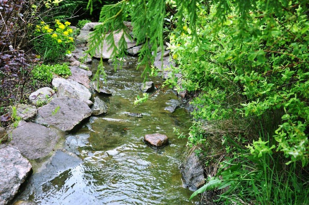Woda w ogrodzie 7